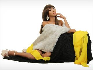 tranny cam model image - MIINERVA
